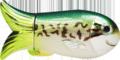 BPY-FLIRE-5